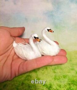 Dollhouse Miniature OOAK Realistic Swan couple bird Malinik Miniatures