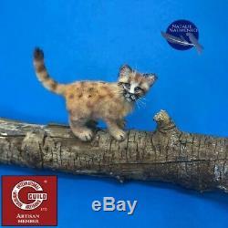OOAK dollhouse lion cub cat 112 miniature handmade IGMA Artisan N. Naumenko