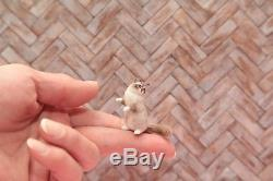 OOAK realistic dollhouse miniature Siberian Lynx Point cat 112 scale